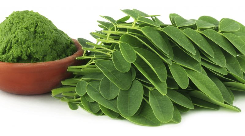 Moringa leaves with paste