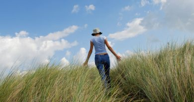 AM31Y5 female walking in sand dunes touching marram grass. Image shot 2006. Exact date unknown.