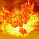 Phoenix (obr.)