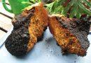 Čaga: superpotravina, která zlepšuje imunitu, oddaluje stárnutí a ničí rakovinu