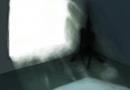 Co byste měli vědět o stínových bytostech