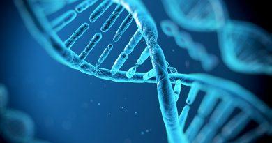 Vědci přiznali, že nevědí, k čemu slouží 75 % lidské DNA