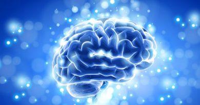 Jak přirozeně podpořit zdraví svého mozku
