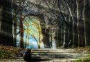 4 způsoby, jak odemknout bránu k podvědomí