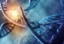 Aktivace spící DNA je jednodušší, než si myslíte
