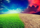 Oxid uhličitý prospívá planetě, urychluje zalesňování a podporuje růst zeleně