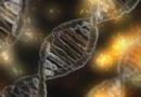 Podle vědecké studie pocházejí všichni lidé z jediného páru, který žil před 200 000 lety