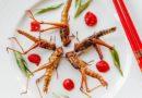 Jedlý hmyz: co jak chutná a co doporučuje Bible