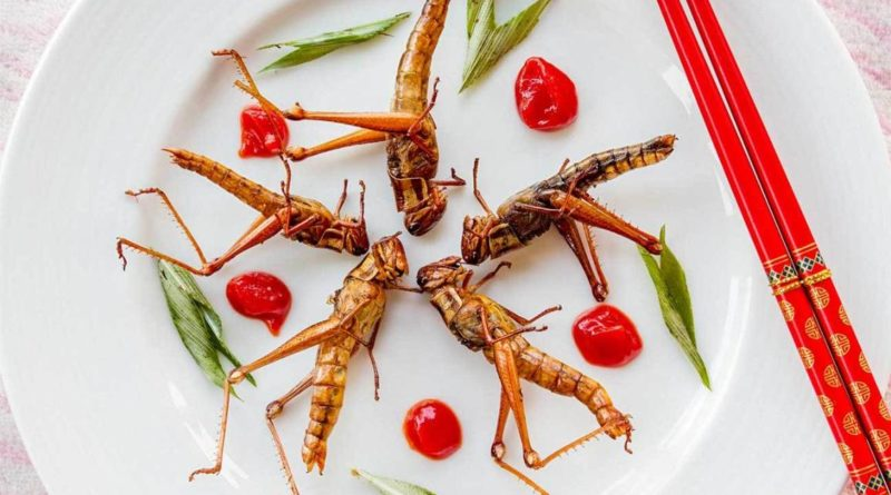 In certain countries in SE Asia, grasshoppers are eaten as a good source of protein. In SE Asia for example,  are regarded for their high content of protein, minerals and vitamins. They are usually collected at dusk, using lamps or electric lighting, fried, flavoured with spices, such as garlic, onions, chile, drenched in lime, and used in soup or as a filling for various dishes. They are abundant in SE Asian food and street markets. 108152543 regional food, regional culture, snack food, south east asia