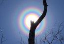 Různobarevné koróny kolem slunce už se dostávají i do mainstreamu