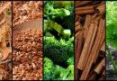 Přirozené potraviny a druhy koření, které pomáhají držet pod kontrolou krevní cukr