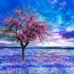 10 zásadních zjištění, která provázejí probuzení vyššího vědomí