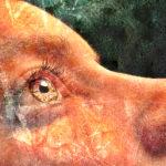 Dočasné a trvalé duchovní probuzení: k čemu jsou dobré životní krize