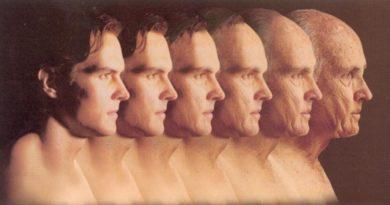 Jak se měníme v průběhu sedmiletých životních cyklů