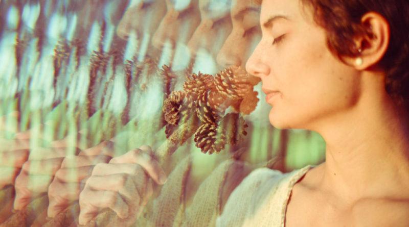 Umění tvorby synchronicit: 12 klíčů k prožívání mystické reality 4.