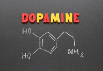 Životně důležitý dopamin – jak funguje a co ovlivňuje jeho tvorbu (2/2)