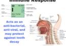 Jód – imunitní odpověď úst