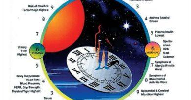 Studie: Cirkadiánní hodiny a viry (3/3)