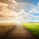 Pět důvodů, proč mít naději v lidstvo do roku 2021 (a dál)