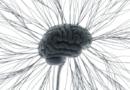 Nová věda: Univerzum se učí samo sebou: je přírodou, nebo strojem? Žijeme v jednom obřím algoritmu!